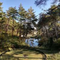 町民の森 公園からの眺め