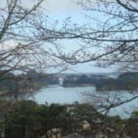 日吉神社からの眺め