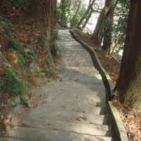 葉山神社階段