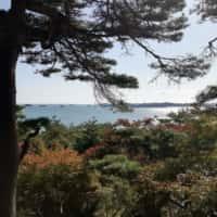 味処双観山展望台からの眺め