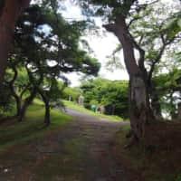 新富山の登山道